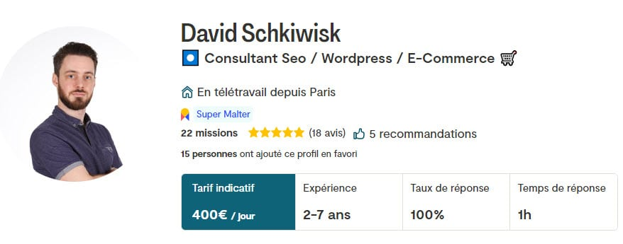 David Schkiwisk Malt Consultant Seo E Commerce