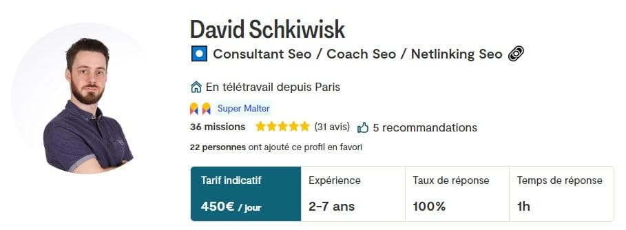 consultant seo david schkiwisk